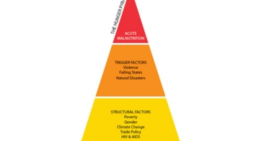 Action Against Hunger hunger pyramid.