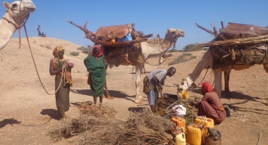 Desperate water shortages in Somalia are forcing families to walk long distances, up to 70 miles, to find it. Photo: Action Against Hunger Somalia.