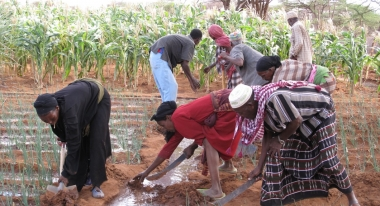 ACF's cash-for-work programs. Photo: ACF-Kenya, N. Gangadharan.