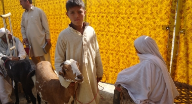 Ibrahim Bibi with the goat he and his grandmother picked out