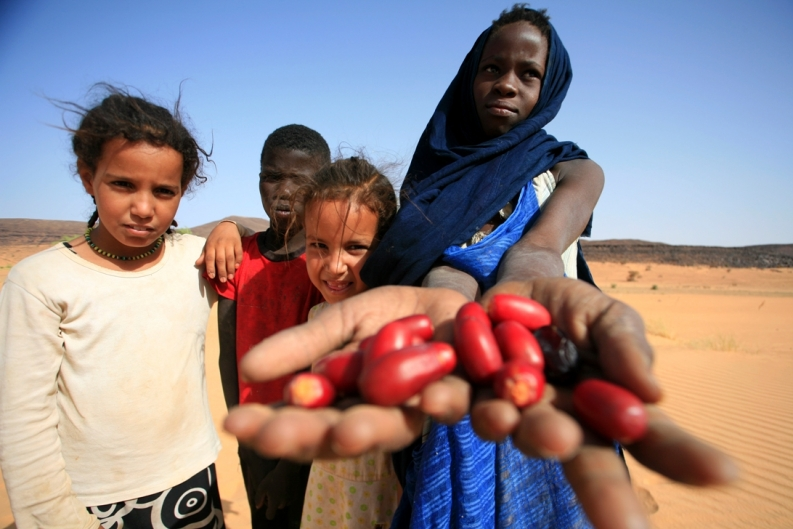 Mauritanian children