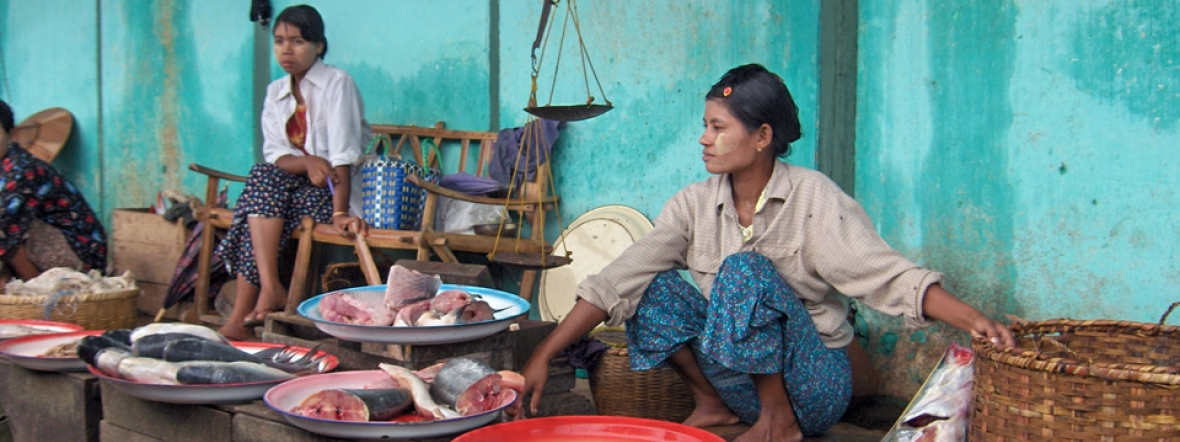 Action Against Hunger supports livelihood activities like selling fish at markets in Myanmar.