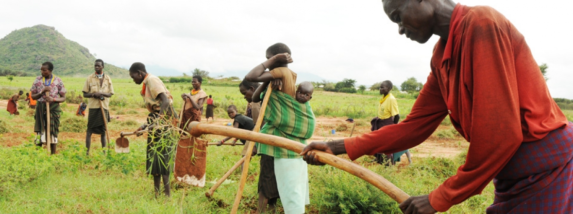 We train women farmers in Uganda to improve their access to income and food.