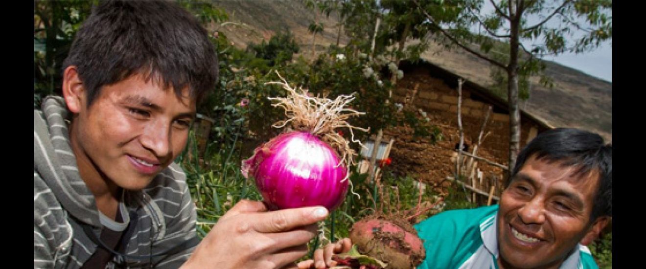 Stronger crops in Peru