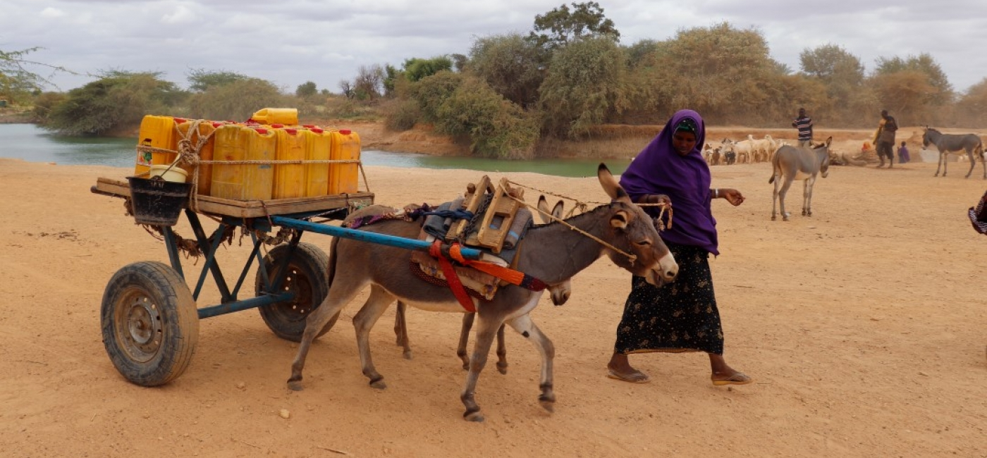 Amina Mukhtar collects water to bring home to her village more than 10 miles away.