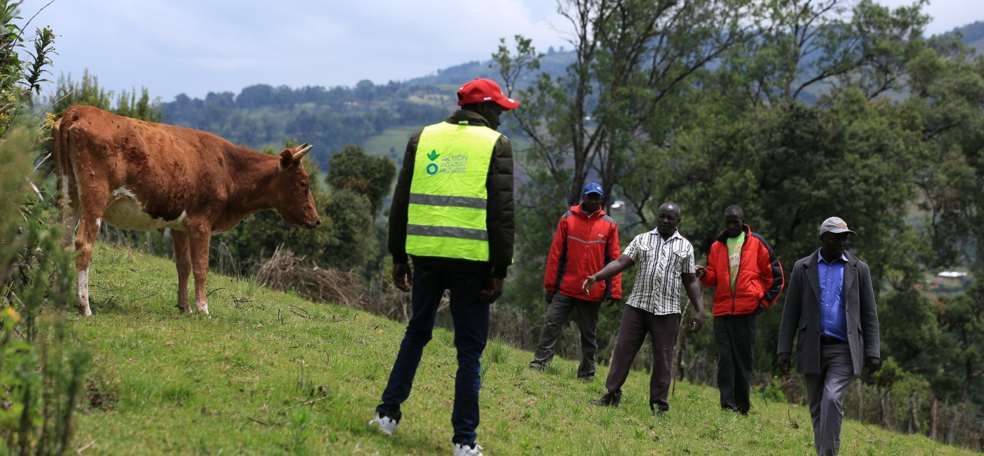 Action Against Hunger staff carry out a cattle vaccination campaign in West Pokot County, Kenya.